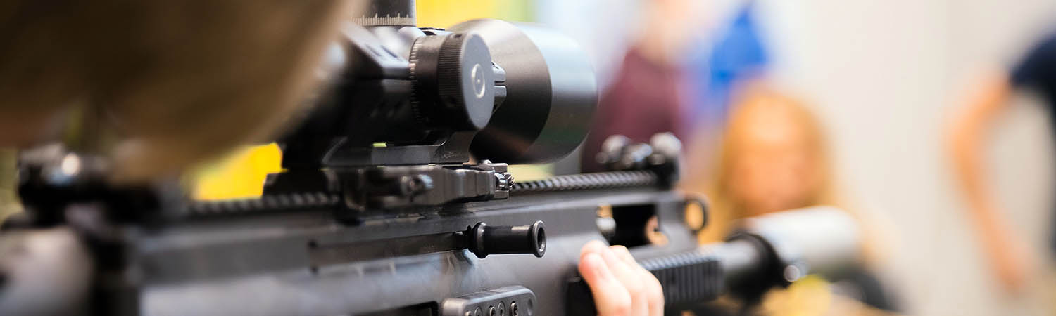 Bushnell AR Optics 1-4x24mm Review