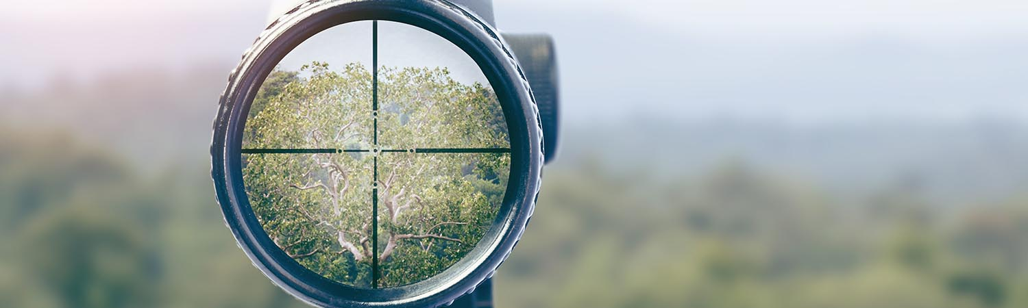 SCOPE ADJUSTMENT: WHICH WAY TO TURN?